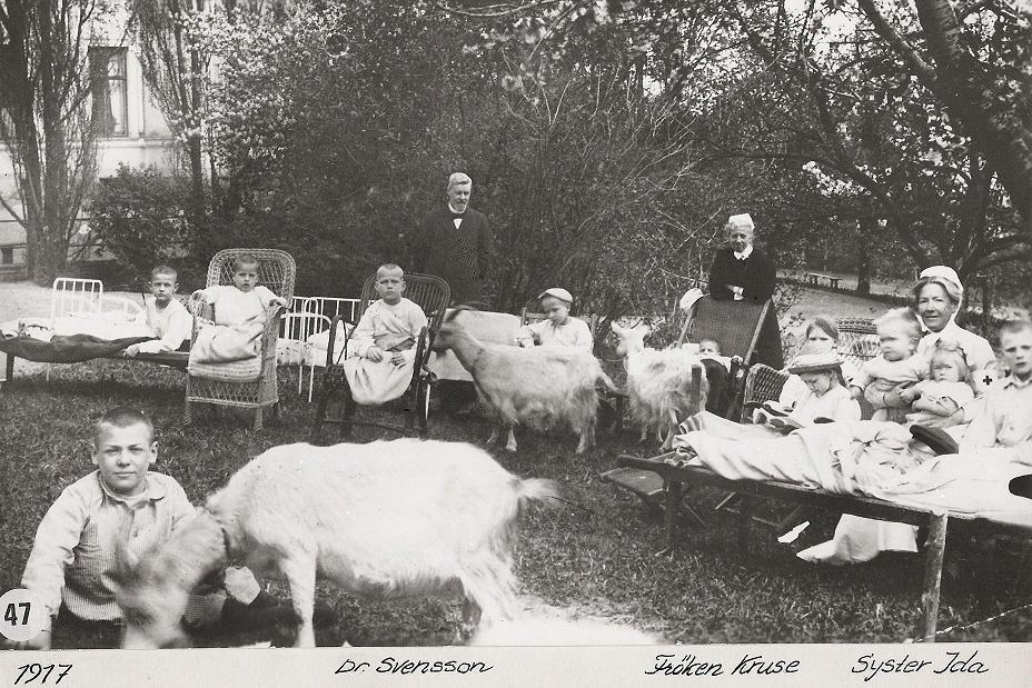 Barn och getter 1917.